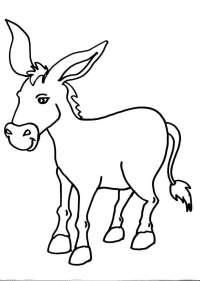 disegni asino della fattoria da colorare:asino-asina ...