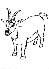 disegni animali in fattoria da colorare:capra,la capra ...