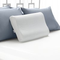 Sleep Innovations Contour Pillow | Bamboo Pillow Reviews