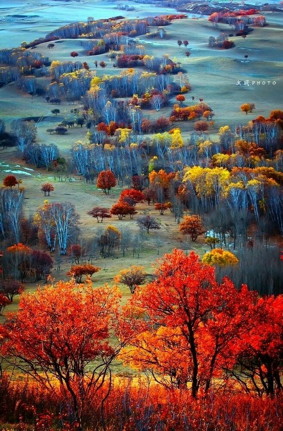 Fall Leaves Wallpaper 20 Fall Landscapes You Won T Believe Are Real