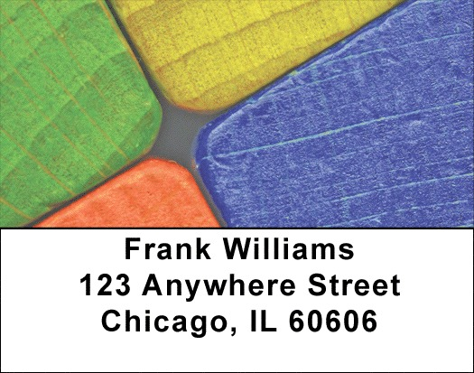 Creative Fun Address Labels