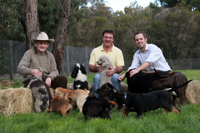 three generations of Banksia Park Puppies breeders