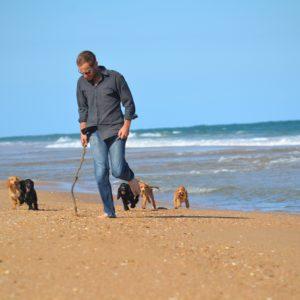 Banksia Park Puppies handling