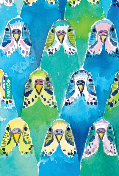 Kitty Wallpaper Iphone The Download Budgie Barbarian By Barbra Ignatiev