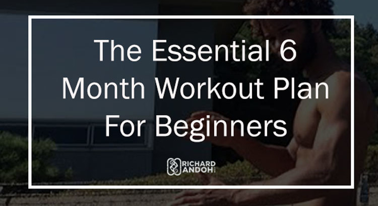 The Essential 6 Month Calisthenics Workout Plan Bar Brothers