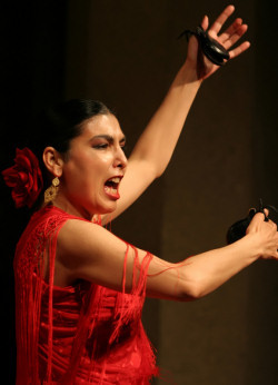 flamenco performer