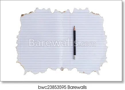 Art Print of Lined paper with burned edges Barewalls Posters
