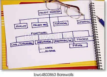Project organization chart, Art Print Barewalls Posters  Prints