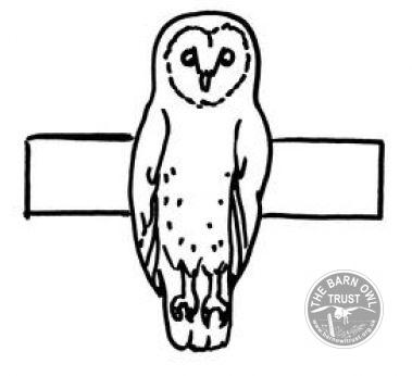 Barn Owl finger puppet - The Barn Owl Trust