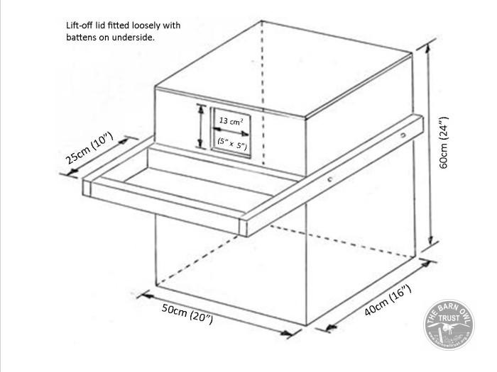 Barn Owl nestboxes Free owl nest box plans