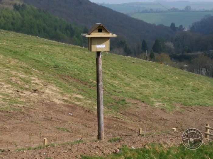 Pole Mounted Nest Box For Barn Owls The Barn Owl Trust