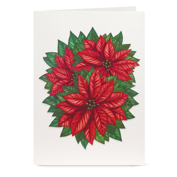 Cheerful Poinsettia Pop-Up Christmas Cards 2 Reviews 4 Stars