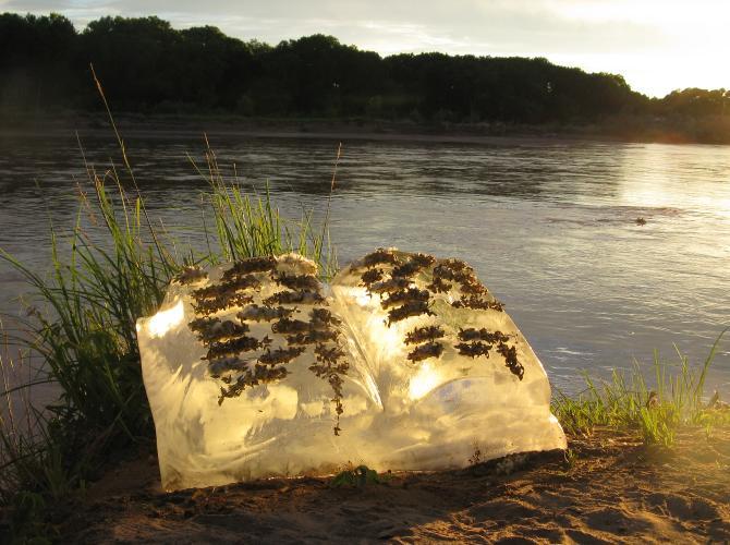 global warming art melting ice books