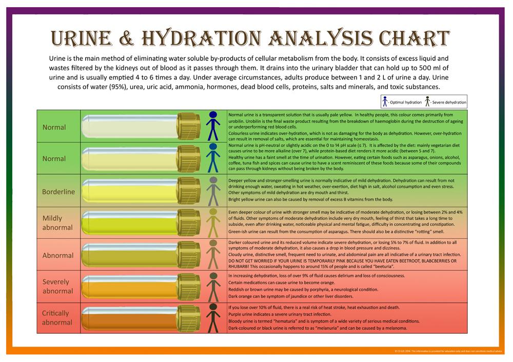 Pee Piss Urine Poo Poop Faeces Bowel Movements - stool color chart