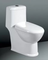 Two Flush Floor Mounted Toilet Sanitary Ware , One-Piece ...