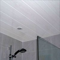 Belmont White Ash 2.7m Ceiling Panels from The Bathroom ...