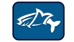 fishmagician