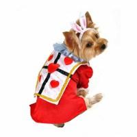 Alice in Wonderland's White Rabbit Halloween Dog Costume ...