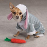 Bunny Rabbit Costume for Dogs by Zack & Zoey | BaxterBoo