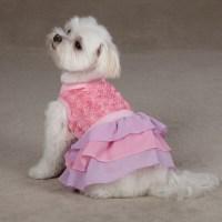 Cotton Candy Dog Dress - Pink | BaxterBoo