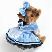 Fantasy Alice in Wonderland Halloween Dog Costume | BaxterBoo