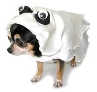 Ghost Dog Costume   BaxterBoo
