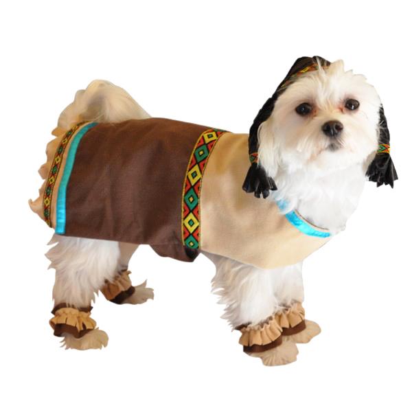 Indian Halloween Dog Costume