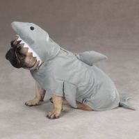 Land Shark Costume for Dogs by Zack & Zoey