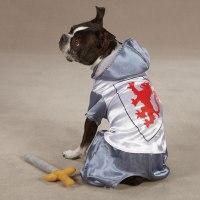 Medieval Knight Dog Halloween Costume   BaxterBoo
