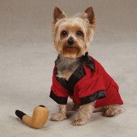 Party Hounds Smoking Jacket Dog Halloween Costume   BaxterBoo
