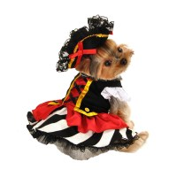 Pirate Girl Halloween Dog Costume | BaxterBoo