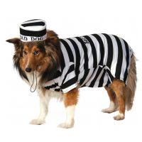 Prison Dog Halloween Costume | BaxterBoo