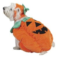 Pumpkin Pooch Costume for Dogs by Zack and Zoey | BaxterBoo