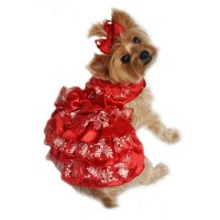 Red, White and Gold Organza Dog Dress   BaxterBoo