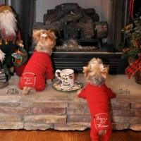 Santa's Lil Helper Dog Pajamas | BaxterBoo