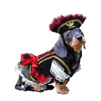 Swashbuckler Pirate Dog Costume