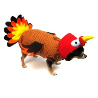 Turkey Dog Costume | BaxterBoo