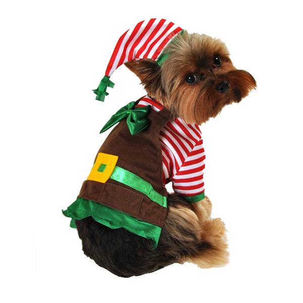 Workshop Elf Dog Costume