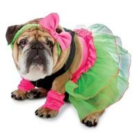 Zelda 80's Party Halloween Dog Costume   BaxterBoo