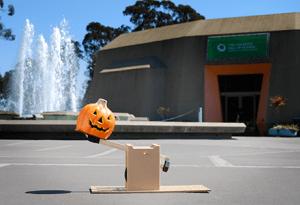 pumpkin-catapult-landing-page