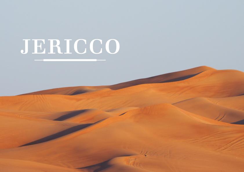 JERICCO – LOGO