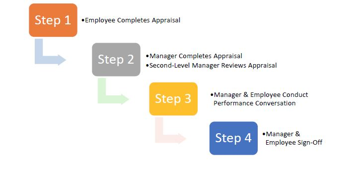 Effective Employee Evaluation Steps They Are Excelling In Their - Effective Employee Evaluation Steps