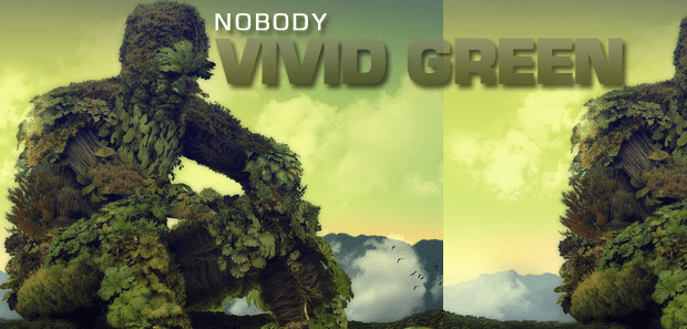 "Nobody ""Vivid Green"" Review"