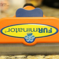 Product Review: FURminator deShedding Tool