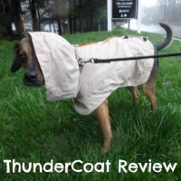 O is for Outside in the Rain with a ThunderCoat #atozchallenge