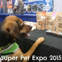 Super Pet Expo Brings Monkeys and More!