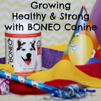 Growing Healthy & Strong with BONEO Canine