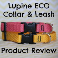 ECO Collection Collars & Leashes from Lupine + GIVEAWAY!