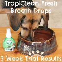 Get More Doggy Kisses With #TropiCleanFresh Breath Drops + GIVEAWAY!