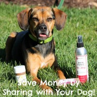 Save Money By Sharing with Your Dog! + GIVEAWAY!